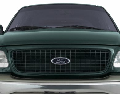 Grille  2000 Ford Expedition