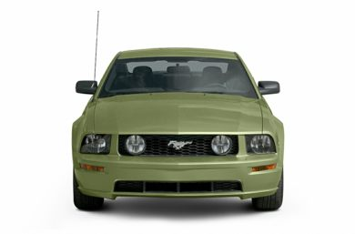 Grille  2006 Ford Mustang