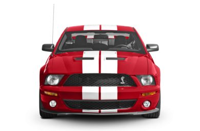 Grille  2008 Ford Shelby GT500