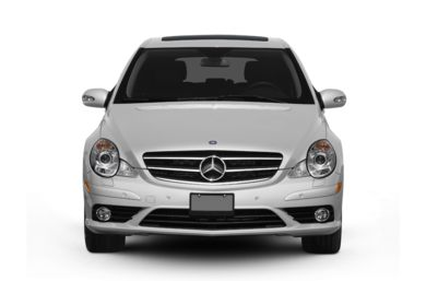 Grille  2010 Mercedes-Benz R350 BlueTEC