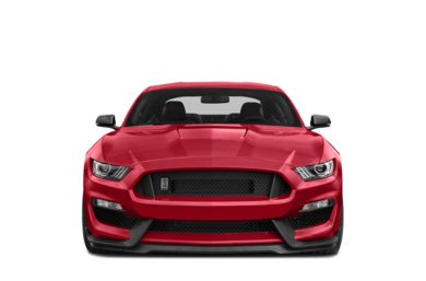 Grille  2018 Ford Shelby GT350