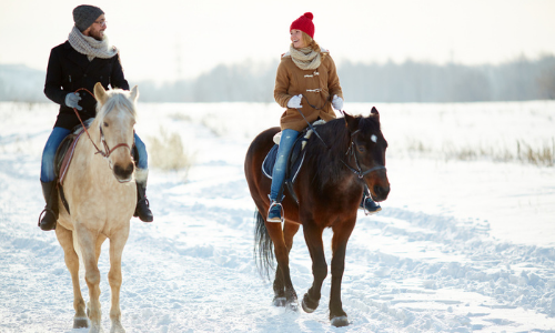 Horseback riding in the snow