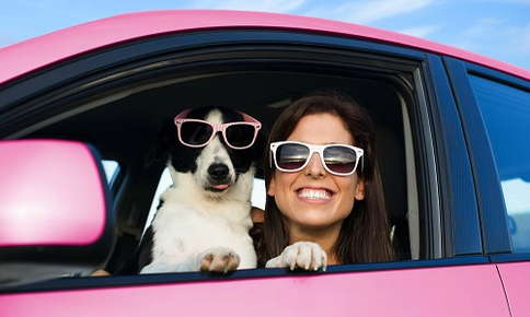 Woman and dog traveling by car in style