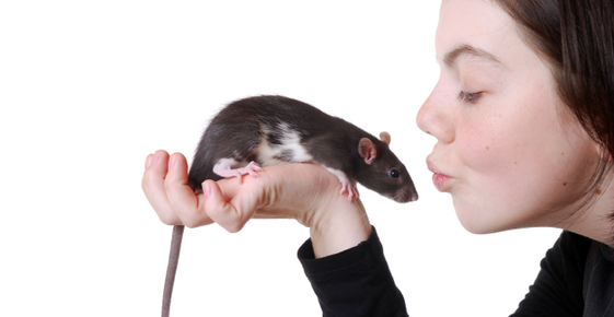 Image of a woman kissing a pet rat.