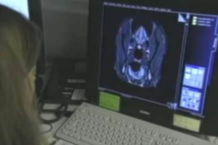 Image of a woman looking at scan results on a computer screen.