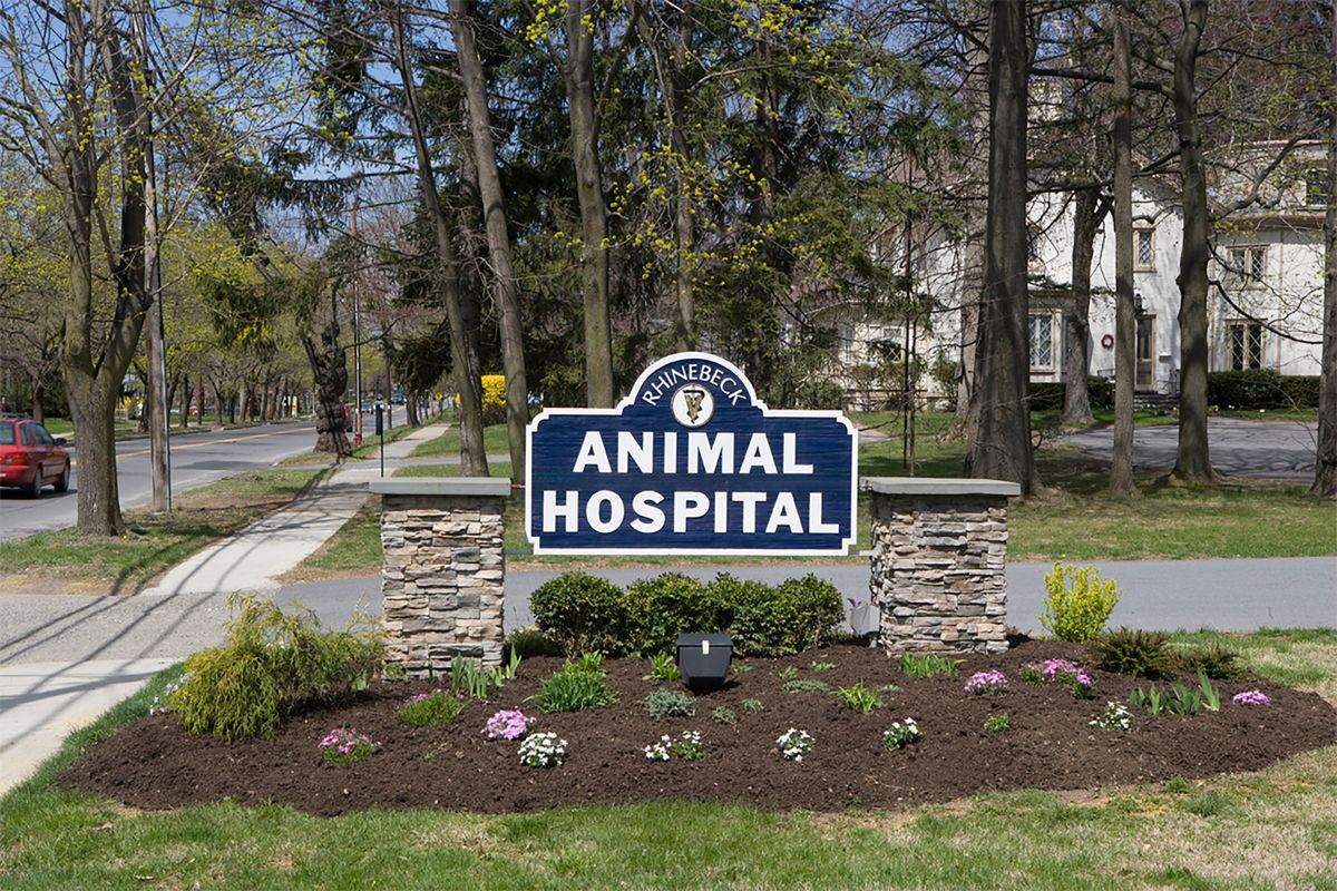 Welcome to Rhinebeck Animal Hospital!
