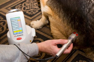 K-Laser Therapy
