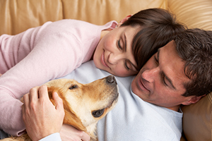 Image of a couple laying down petting their dog