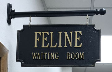 Feline Waiting Room