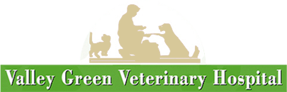 Valley Green Veterinary Hospital