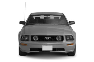 Grille  2009 Ford Mustang