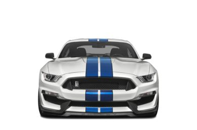 Grille  2016 Ford Shelby GT350