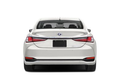 Rear Profile  2019 Lexus ES