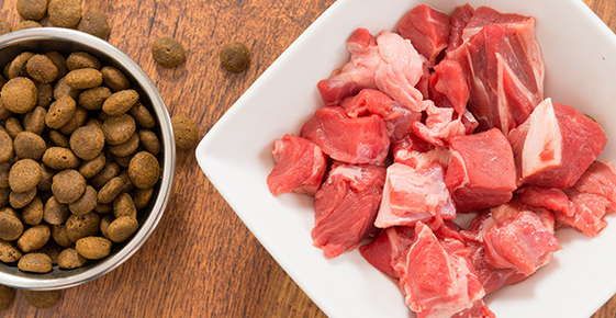 Image of pet kibble next to raw meat.