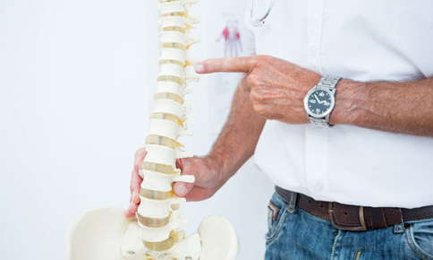 Image of a male chiropractor in his clinic pointing to a replica human spine to educate a patient.