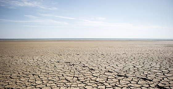 Image of the desert.