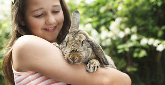 Image of girl holding rabbit.