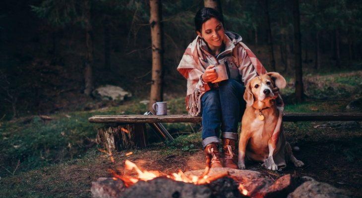 dog with owner camping