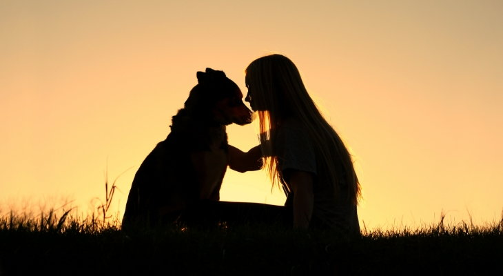dog and child at sunset