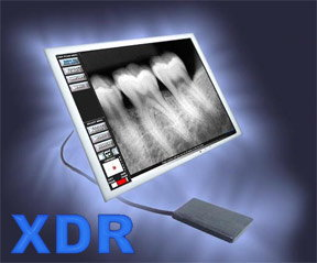 XDR Digital X-Ray