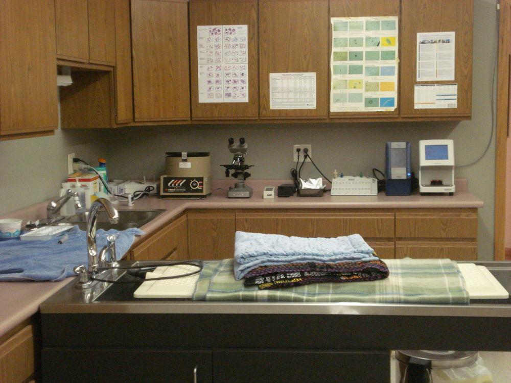 Treatment Area and Laboratory
