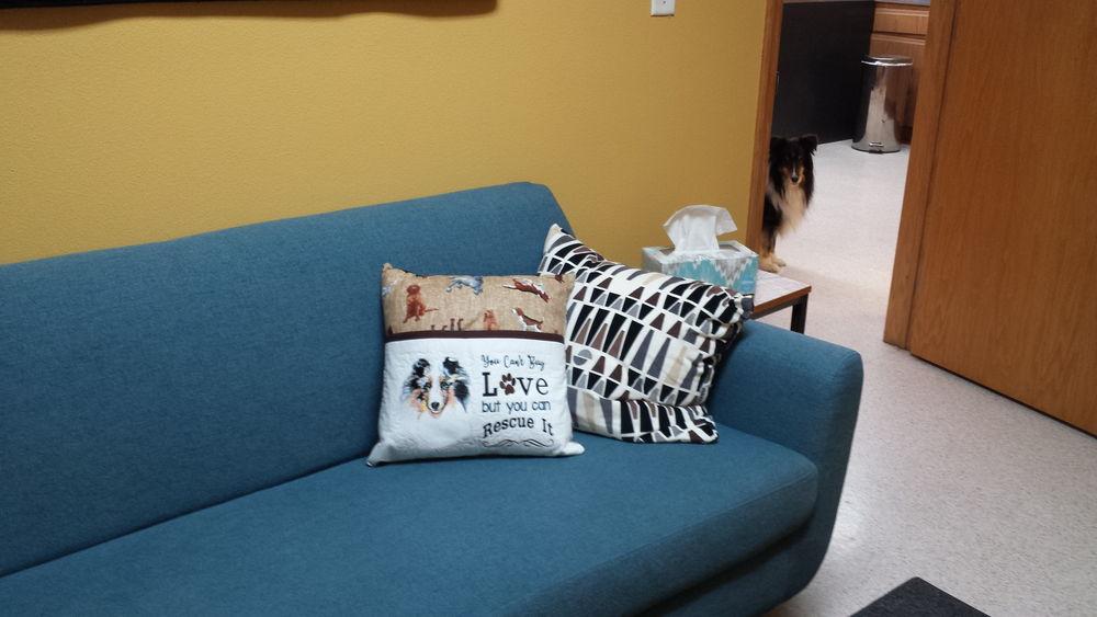 Quiet Room Couch