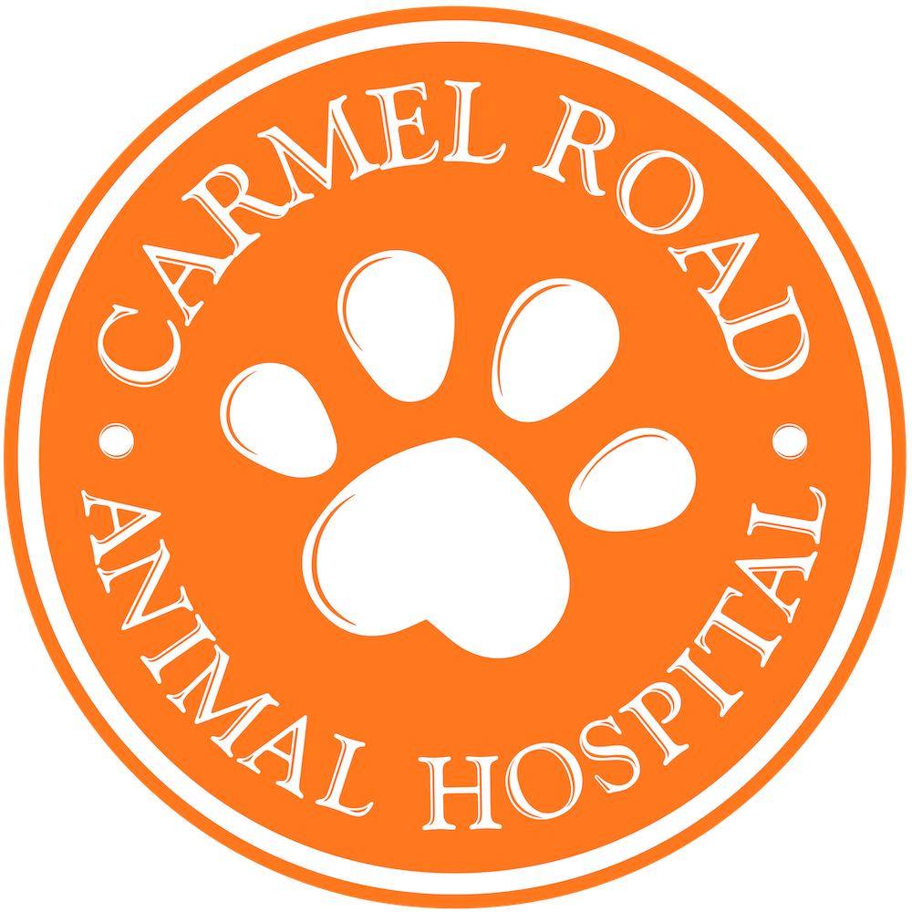 Carmel road animal hospital charlotte NC