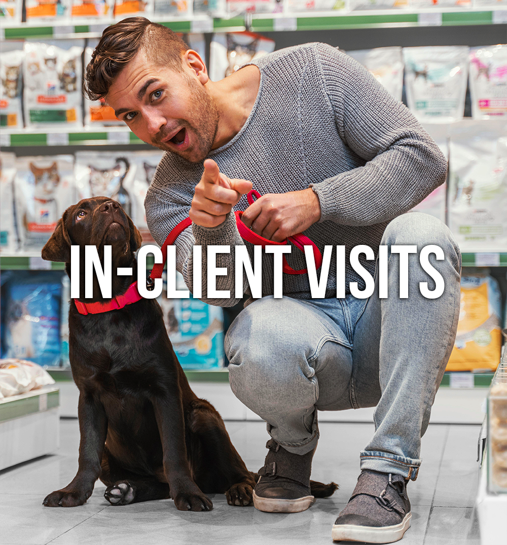 In-Client Visits