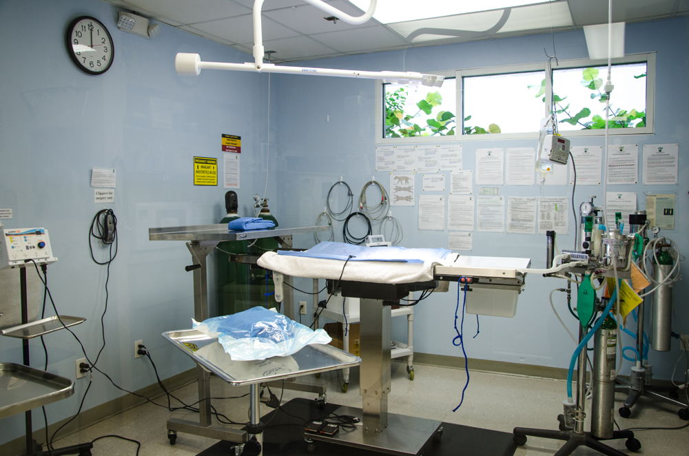 Surgery_Suite_2