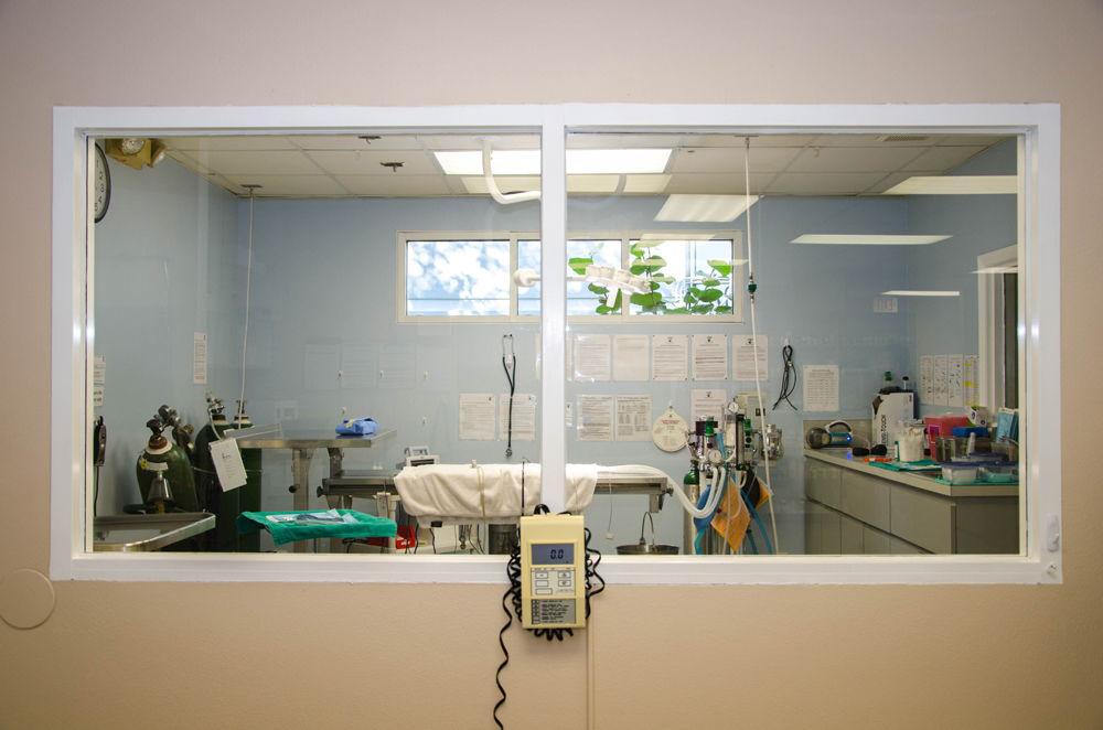 surgery_suite
