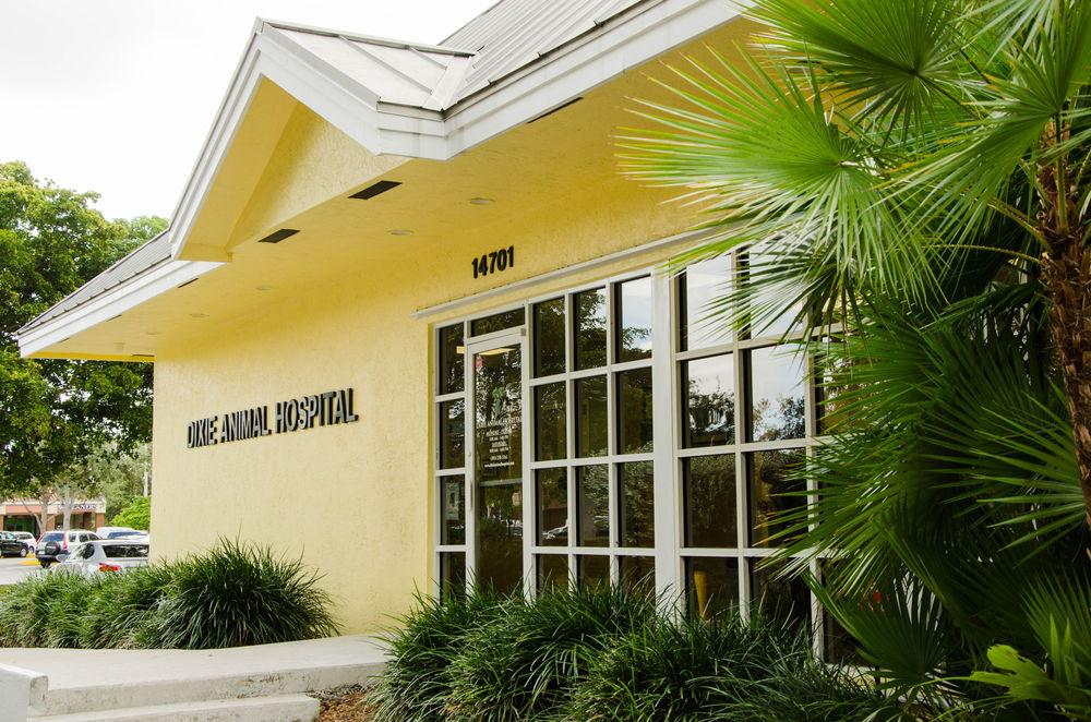 hospital_wall1