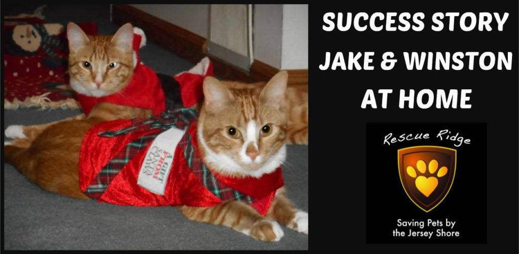 Jake and Winston