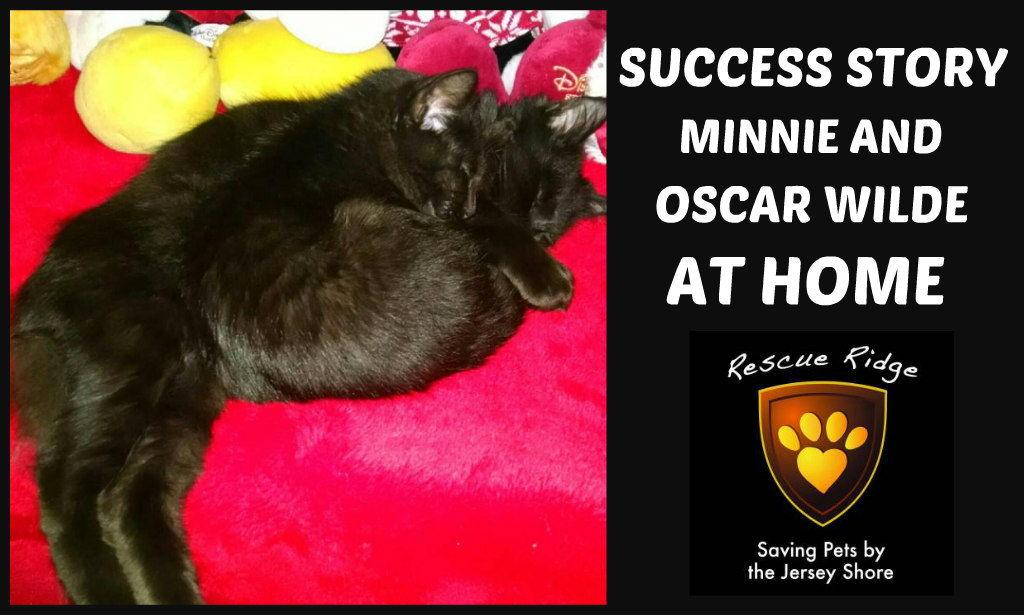 Minnie Oscar