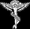 woloshin chiropractic logo