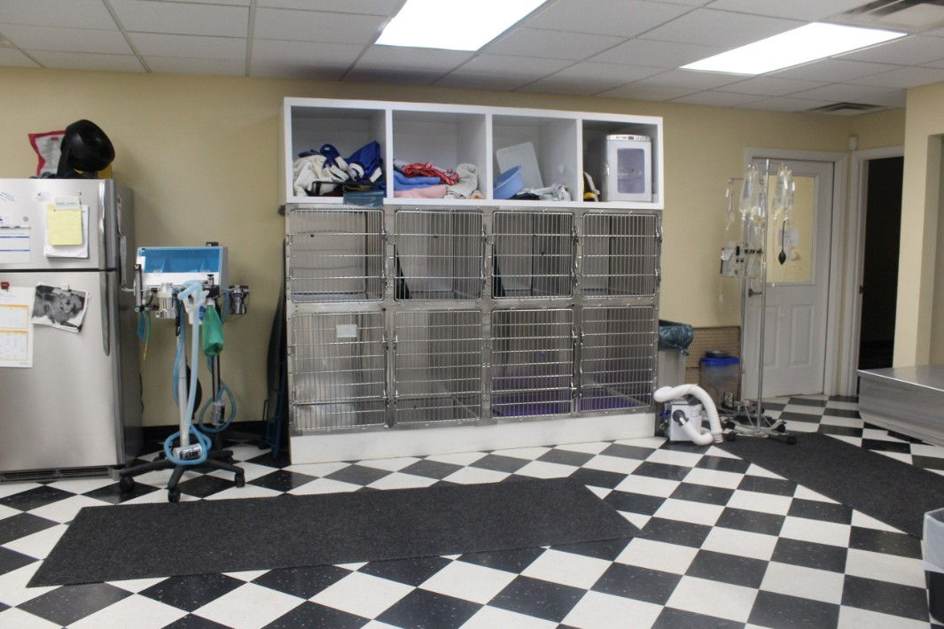 Dental Station