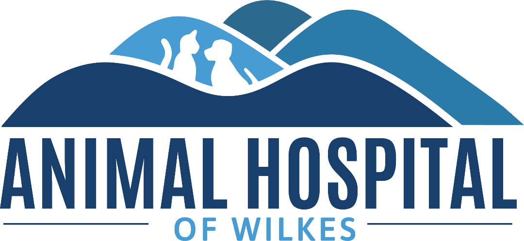 The Animal Hospital of Wilkes, P.A.