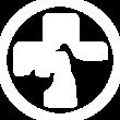 HMVS Logo