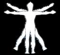 pinckneychiropractic_logo
