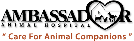 Ambassador Animal Hospital PC