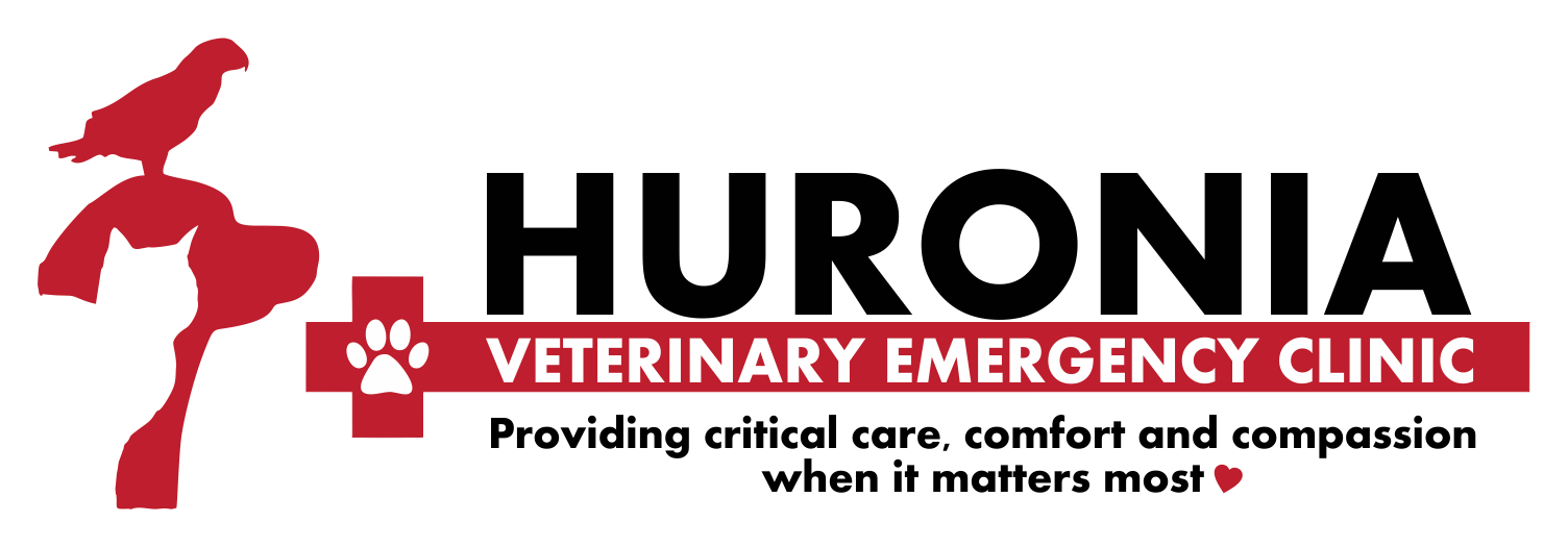Huronia Veterinary Emergency Clinic