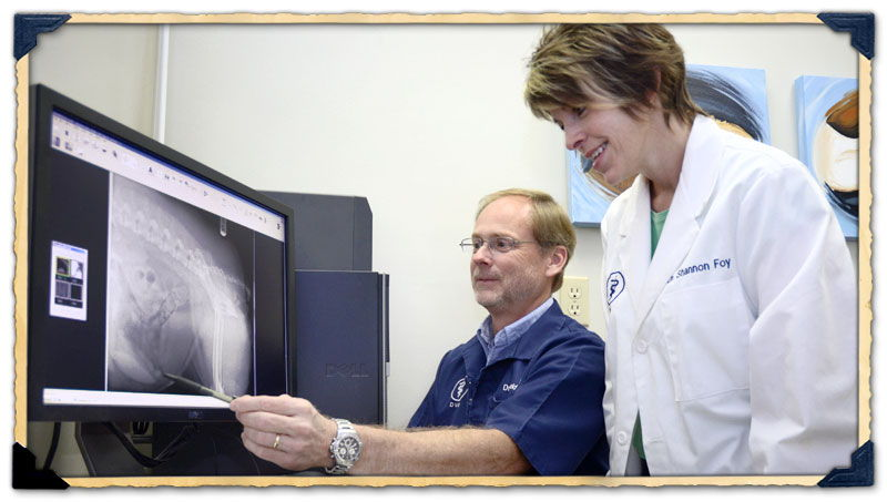 Digital Radiology Analysis