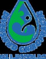 Diversified Chiropractic Logo