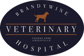 Brandywine Veterinary Hospital