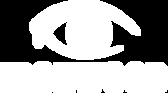 IEV Logo