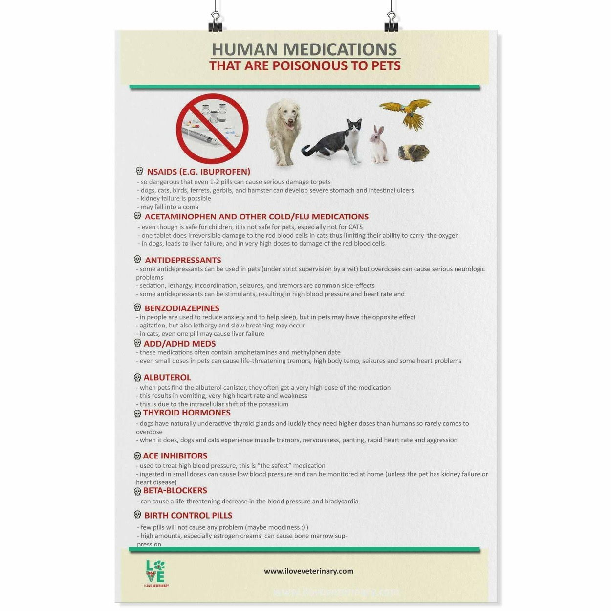 Human Medications
