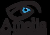 Amelia Eye Associates