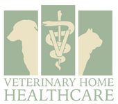 Veterinary Home Healthcare