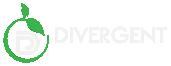 Divergent Innovative Health Care