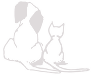 PPVS Logo