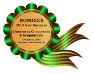 2013 New Business nominee badge